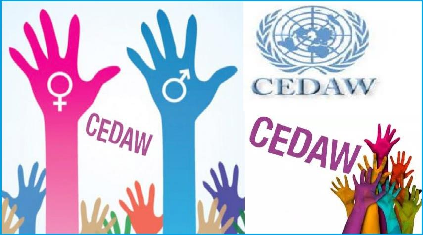 OPINION: CEDAW; The Devil Is In The Details