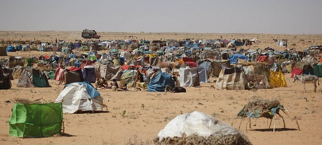 What It Means To Be  A Displaced Person