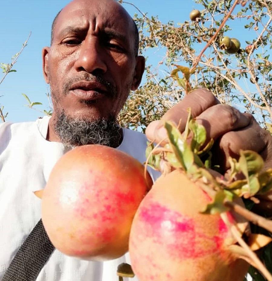 Farmer Fageer: A Miraculous Achievement