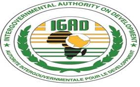 IGAD STATEMENT ON THE SITUATION IN THE SUDAN