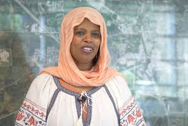 First Sudanese-American Woman Elected To City Council