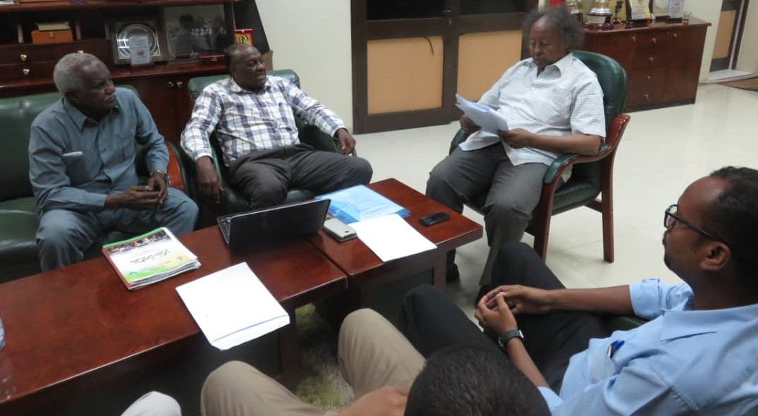 In Search Of Meeting FIFA, CAF Requirements For Professional Club Football