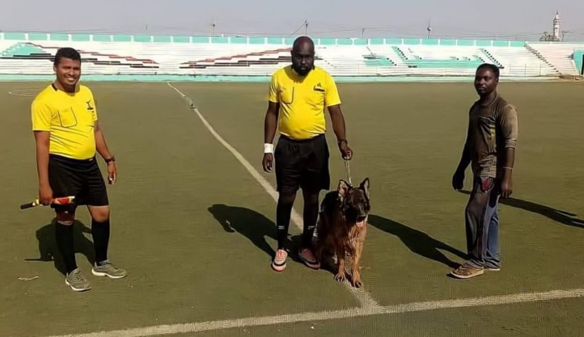 Referee Uses Police Dog To Deter Rowdy Fans