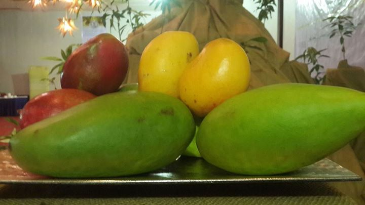 Mango: The Queen Of Fruits