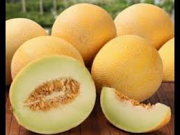 Cantaloupe, Sudan's Promising Export Fruit