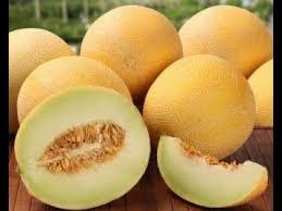 Cantaloupe, Sudan's Promising Export Fruit