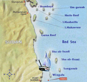 Sudan sea shores on the Red Sea are known for their virgin almost uncontaminated waters, a number of international organizations specialized in preservation have shown readiness to help protect some of the rare, if not endangered species.
